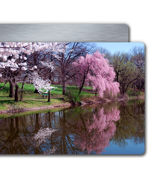 16 x 24 Metal Print (Horizontal)
