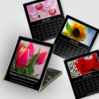Jewel Case Calendar - Black or White