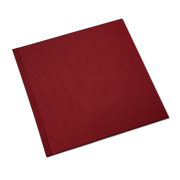 12 x 12  Red Solid Cover Photo Book