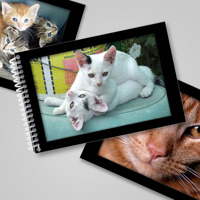 4x6 Hor Flip Book - Black Embossed Frame