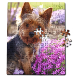 110 Piece Jigsaw Puzzle, Vertical