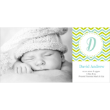 Birth Announcement (13-089-4x8)