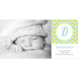 Birth Announcement (13-089-4x8)