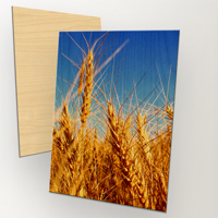 "200x300mm (8x12"") Vertical Wood Print"