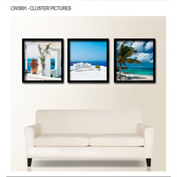 CW3001 - cluster pictures