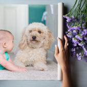 Canvas and Fine Art Prints with Mounting Options