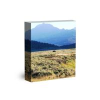 16 x 20 Canvas Wrap (Image Wrap) 1/2 inch bar