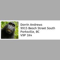 Address Label Sheet of 30