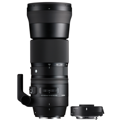Sigma-150-600mm F5-6.3 Sports + TC-1401 Teleconverter Kit for Nikon F-Lenses - SLR & Compact System