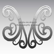 Jatolia McDowell Photography & Design