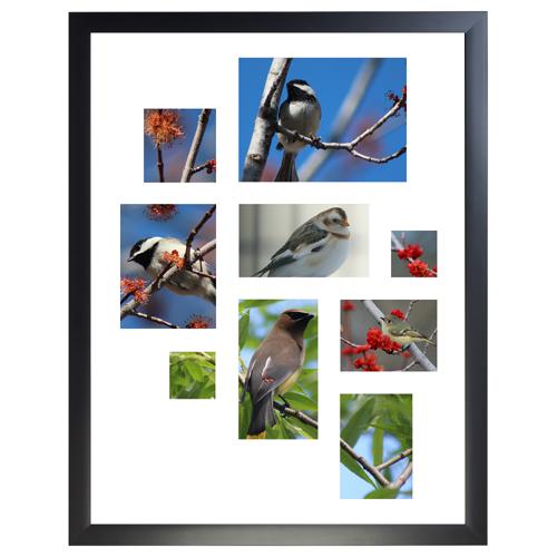 Framed Collage Print 11x14 - V
