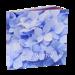 12x12 Superia Layflat Album