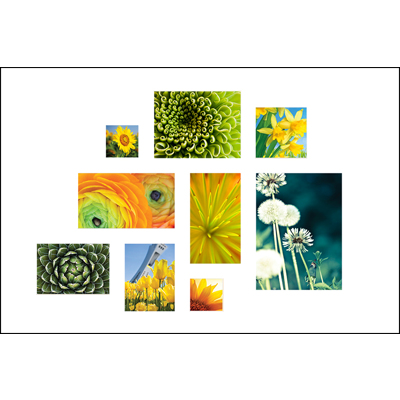20x30 Print Collage - H