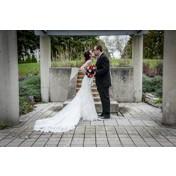 Brain &  Kelly - Wedding