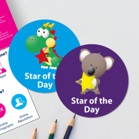 250 x Star of the Day Stickers