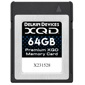 Delkin Devices-Premium XQD Memory Card - 64GB-Memory cards, tape and discs