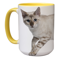 15oz Yellow Handle & Inner Photo Mug - 2 images