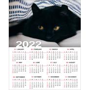 8 x 10 Poster Calendar - 2022