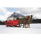 Banff Trail Riders Sleigh Ride Photos