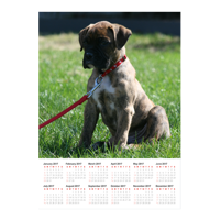 11x14 Poster Calendar with 1 Image.