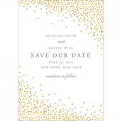 Confetti - 1 Sided Save the Date