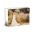 14 x 11 Canvas Wrap (White Wrap) 1/2 inch bar