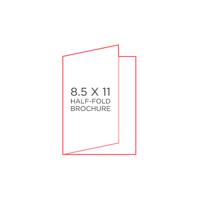 """25pk - 8.5"""" x 11"""" Brochure"""