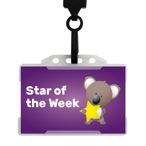20 x Star of the Week Badges