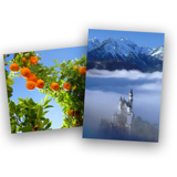 Closeout Enlargement Sale
