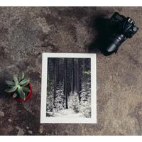 Kodak Endura Prints
