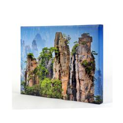 20 x 16 Canvas - 1.5 inch Image Wrap