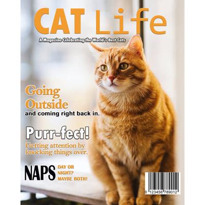 8x10 Cat Life Magazine Cover