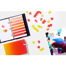 Pantone-Solid Chips Coated and Uncoated - Includes Paper Chip Savers-Miscellaneous Studio Accessories