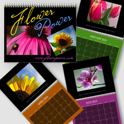 A4 - 2019 Dark Color Background Wall Calendar - Freestyle