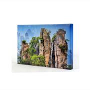 18 x 12 Canvas - 1.5 inch Image Wrap