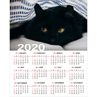 200x250mm Genuine Photographic Poster Calendar - 2020