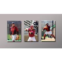 3-4x6 images on 10x18 Custom Background