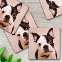 Metal Print Coasters 100x100mm - Set of 4 with same images (Silver)