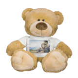 Premium Teddy Bear with T-Shirt