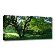 Canvas Mirrored Edge Wrap 12x30