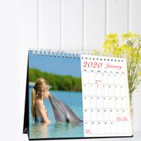2020 Desktop Calendar CLM31D