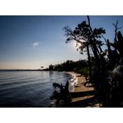 Cattus Island