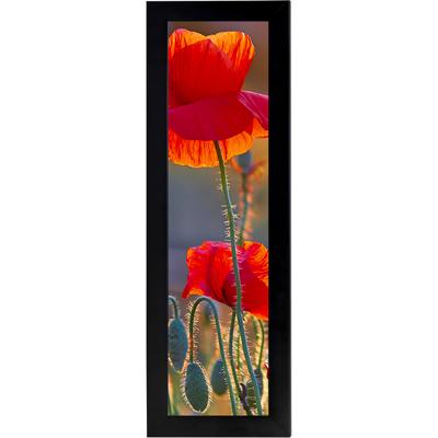 Framed Print 5x15 - V