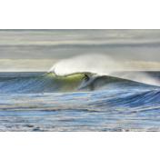Surfing!
