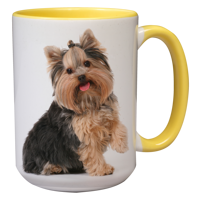 15oz Yellow Handle & Inner Photo Mug