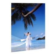 24x36 Vertical Gloss White Aluminum Panel