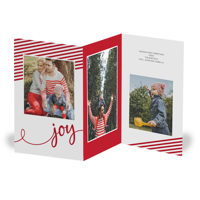 Just for Joy Z-Fold: 10pk Christmas Cards