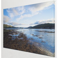 10 x 10 Canvas Wrap With Full Mirrored Edges Of Main Image 1.25 deep./ Square