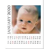 A4 White Background 2020 Spiral Calendar