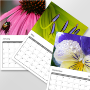 8.5 x 11 Photo Calendar, 12 Month - 2021